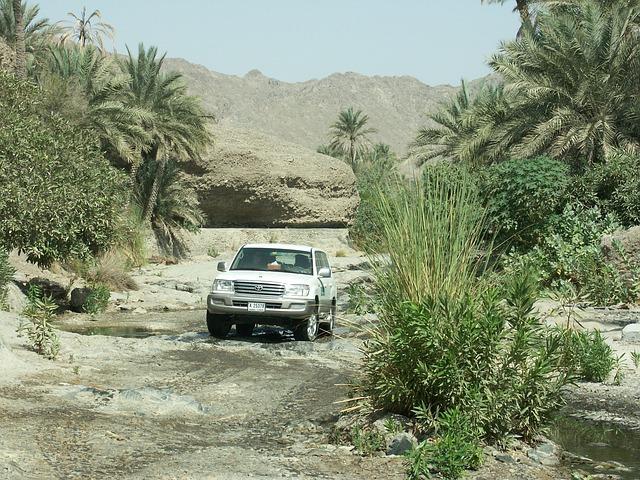 לטייל בנופי שביל ישראל – ברכב או ברגל?